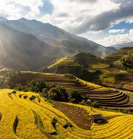 Tiếng Việt chuyên sâu - iVina Edu
