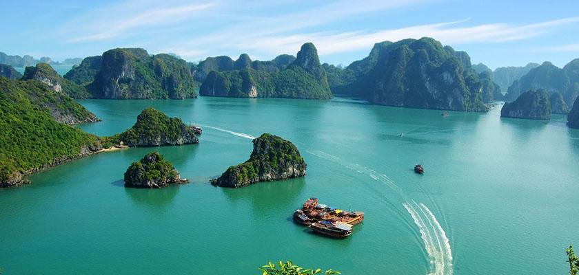 Tieng Viet chuyen nganh